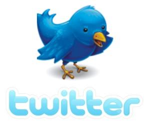 twitter_bird